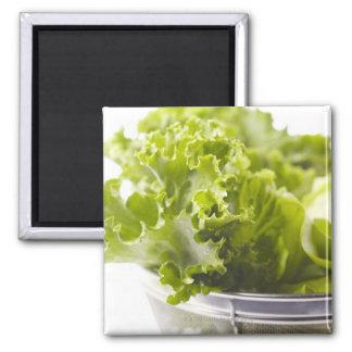 Food, Food And Drink, Vegetable, Lettuce, Square Magnet