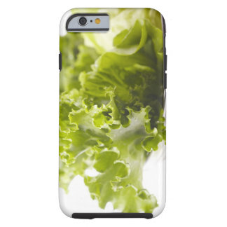Food, Food And Drink, Vegetable, Lettuce, Tough iPhone 6 Case