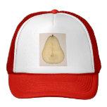 Food - Fruit - A slice of bosc pear