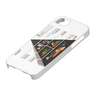 Food Pyramid Barely There iPhone 5 Case