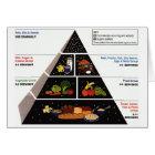 Food Pyramid Card