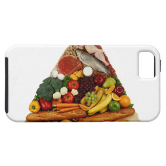 Food Pyramid Case For The iPhone 5