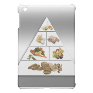 Food pyramid iPad mini cases
