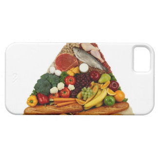 Food Pyramid iPhone 5 Case