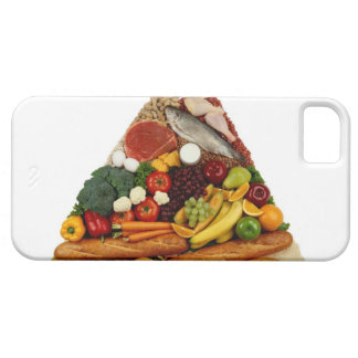 Food Pyramid iPhone 5 Cover