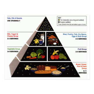 Food Pyramid Postcard