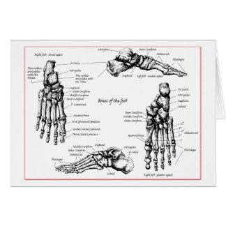 Foot bones. greeting card