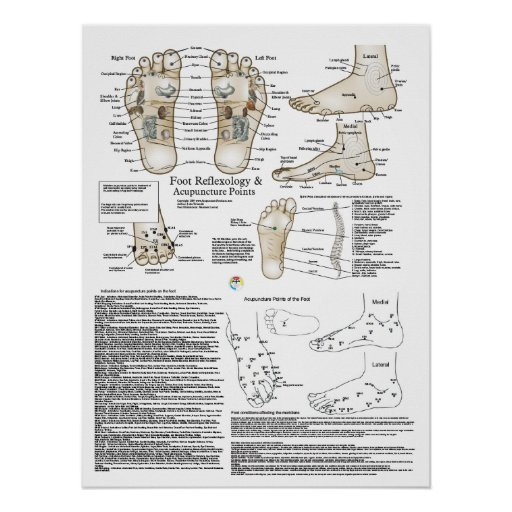 Foot Reflexology and Acupuncture Point Poster