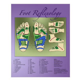 Foot Reflexology chart Print