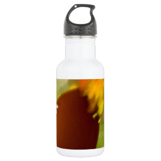 Football on the Fly 532 Ml Water Bottle