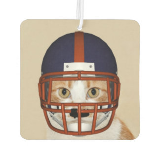 Football playing kitty cat