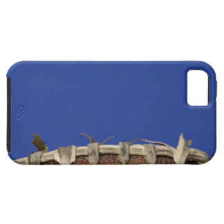 Football time iPhone 5 covers