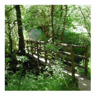 Footbridge in Woodland. Standing Photo Sculpture