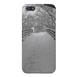 Footbridge iPhone 5/5S Cases