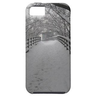Footbridge iPhone 5 Covers