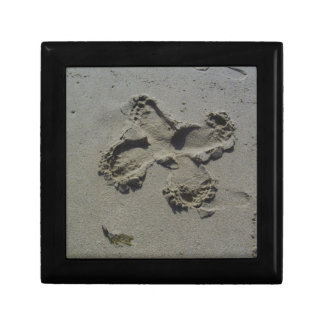 Footprint Butterfly Small Square Gift Box