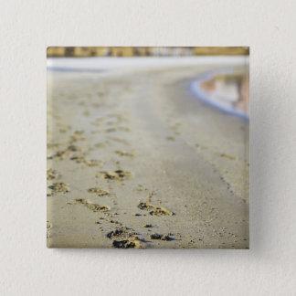 Footprint in coast. 15 cm square badge