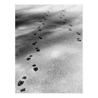 Footprints in Snow Postcard