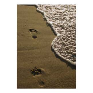 Footprints in the Sand Posters