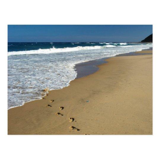 Footprints On Beach, Mabibi, Thongaland Postcard