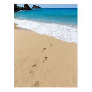 Footsteps in sandy beach leading to blue sea postcard