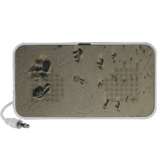 Footsteps on the beach travel speakers