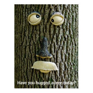 For All the Tree Huggers Postcard