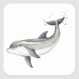 For Baby dolphin children Square Sticker