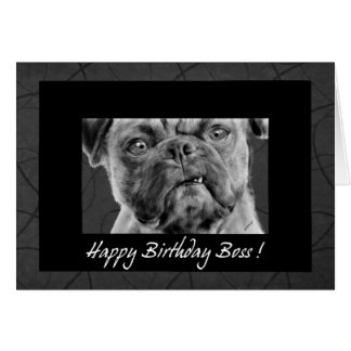 for Boss - Funny Pug Dog Card