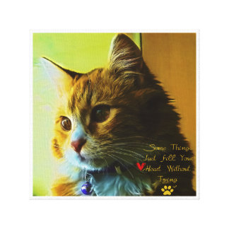 For Cat's Lovers Canvas Print