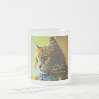For Cat's Lovers Frosted Glass Coffee Mug