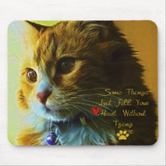 For Cat's Lovers Mouse Pad