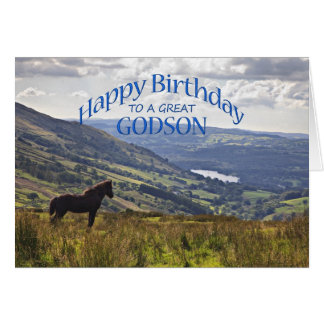 For godson a horse and landscape birthday card