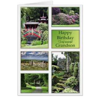 For Grandson, a birthday card with garden views