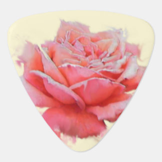 for her, a pink rose with name plectrum