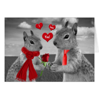 For Husband on Valentine's Day Funny Squirrel Greeting Card