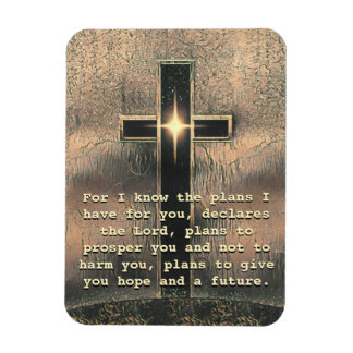 For I Know the Plans... Rectangular Photo Magnet