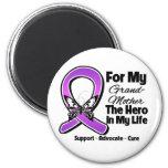 For My Hero My Grandmother - Purple Ribbon Awarene Magnets