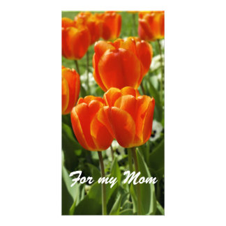 For my Mom Card Photo Greeting Card