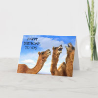 FOR THE CHILD THESE CAMEL SING HAPPY BIRTHDAY