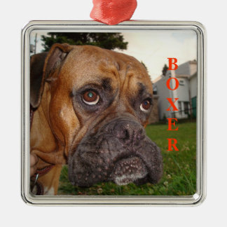 For the love of Boxers! Christmas Ornament