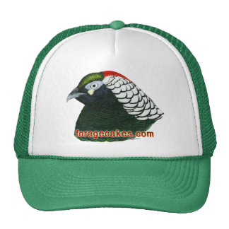 Forage Cakes:  Lady Amherst Pheasant Hats