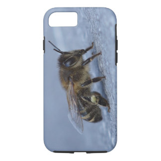 Foraging bee iPhone 7 case