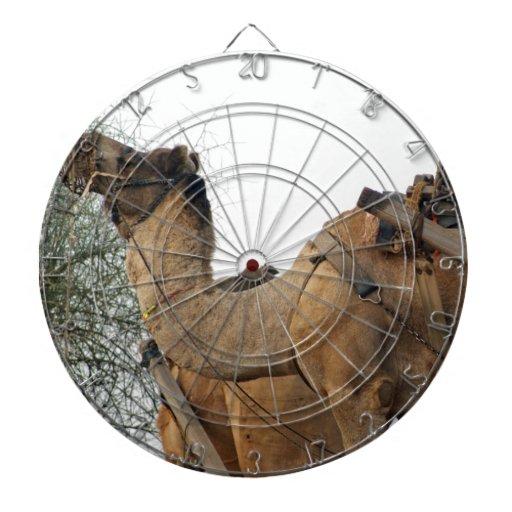 Foraging camel dartboard