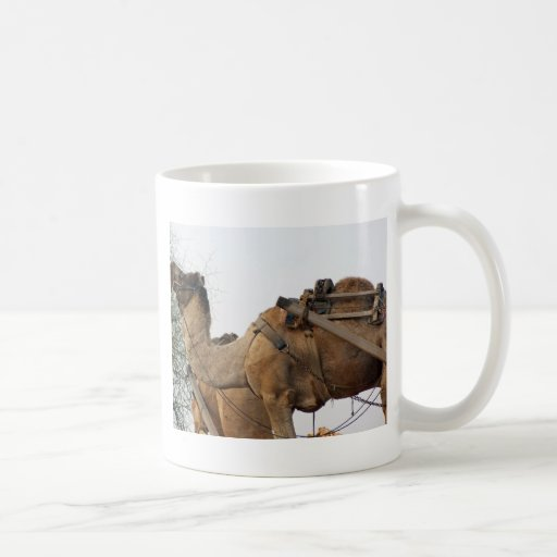 Foraging camel mug