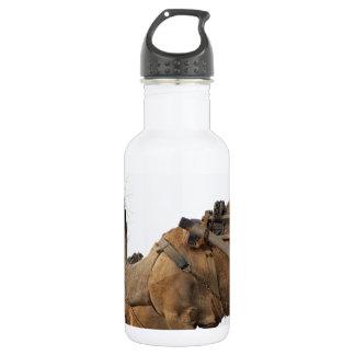 Foraging camel 532 ml water bottle