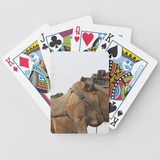 Foraging camel bicycle card decks