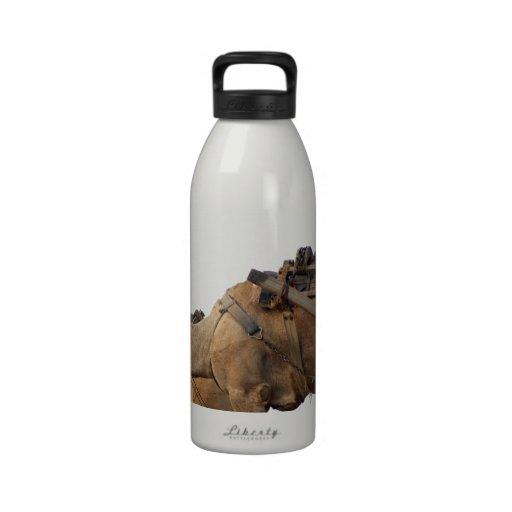 Foraging camel drinking bottle