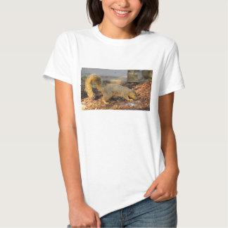 Foraging Fox Squirrel T-shirts