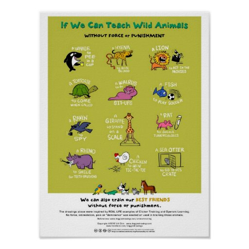 "Force-Free Animal Training Poster (18""x24"")"